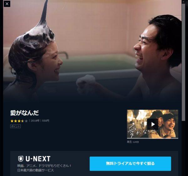 愛がなんだU-NEXT