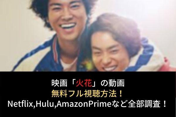 【火花】動画の無料フル視聴はココ!Netflix,Huluでの配信は?脱Dailymotion,Pandora!